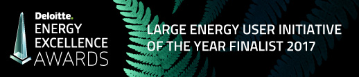 Large Energy User Initiative of the Year Finalist 2017